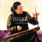 Vietnamese Traditional Dan Bau Music