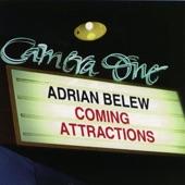 Adrian Belew - 117 Valley Drive