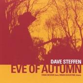 Dave Steffen Band - Workin' Man's Blues