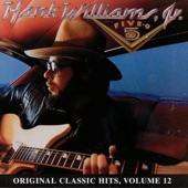 Hank Williams Jr. - Ain't Misbehavin'