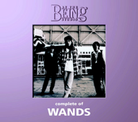 WANDS - Complete of WANDS: At the Being Studio artwork