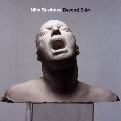 Beyond Skin - Nitin Sawhney