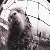 Vs. (Expanded Edition) - Pearl Jam