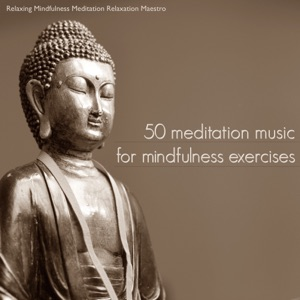 Relaxing Mindfulness Meditation Relaxation Maestro - Trance