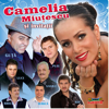 Camelia Miutescu si invitatii - Various Artists