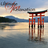 Ultimate Spa Relaxation