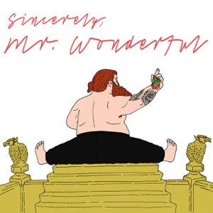 Mr. Wonderful Mp3 Download