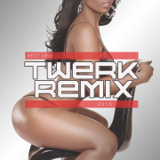 Best of Twerk Remix 2015 (Booty Shake Music) - Various Artists - Various Artists