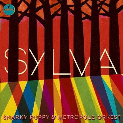 Sylva - Snarky Puppy & Metropole Orkest album