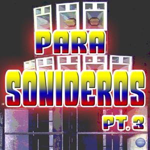 Julio Y Su Combo Andino - Palomitas de Maíz