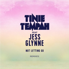 Not Letting Go (feat. Jess Glynne) [Remixes] - EP