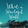 What a Wonderful World Single