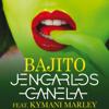 Jencarlos Canela - Bajito (feat. Ky-Mani Marley) ilustración