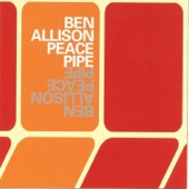 Ben Allison - Disposable Genius