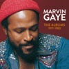 Marvin Gaye: The Albums 1971-1982, Marvin Gaye