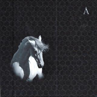 530150d93f7f Альбом «Архангельск» (Аквариум) в Apple Music