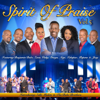 Spirit of Praise, Vol. 5 - Various Artists