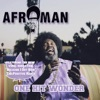 Afroman - Because I Got High (The Positive Remix) [Bonus Track]