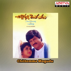 Chittemma Mogudu (Original Motion Picture Soundtrack)