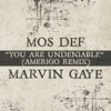You Are Undeniable (Amerigo Remix) - Single ジャケット画像