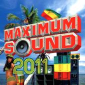 Maximum Sound 2011