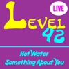 Hot Water - Single, Level 42