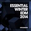 Essential Winter EDM 2014