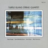 Turtle Island String Quartet - Tempus Fugit