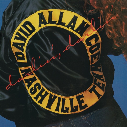 Art for She Used to Love Me a Lot by David Allan Coe