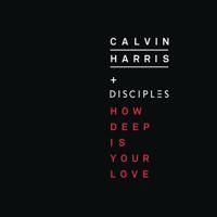 Calvin Harris & Disciples