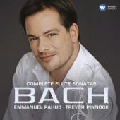 Emmanuel Pahud - Sonata in Eb Major, BWV 1031