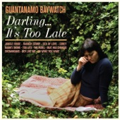 Guantanamo Baywatch - Jungle Bride