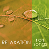 Spa Music Collection - Spa Music Relaxation Meditation mp3