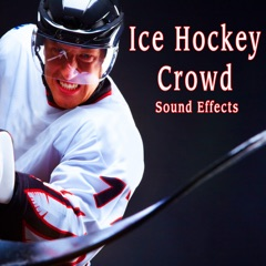 Hockey Stick Scrape Hits Puck to Net with Good Swish on Ice and Impact with Delay Take 3