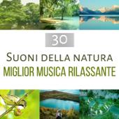 30 Suoni della natura - Migliore musica rilassante: New Age per benessere, cura del corpo e la mente, meditazione profonda, rallentare la tensione con yoga, tai-Chi e pilates
