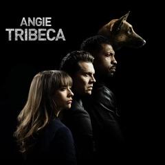 Angie Tribeca, Staffel 1