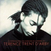 Terence Trent D'Arby - Who's Loving You
