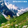Zona Liriki - Cities of the Caucasus