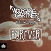 Forever (feat. will.i.am) [Remixes] ジャケット写真