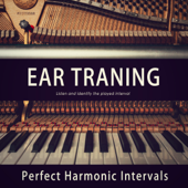 Perfect Harmonic Intervals 28