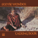 Lookin' for Another Pure Love - Stevie Wonder