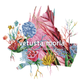 Consejo de Sabios - Vetusta Morla