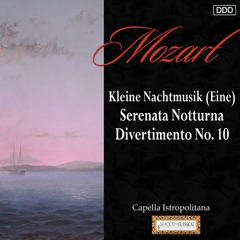 "Serenade No. 13 in G Major, K. 525 ""Eine kleine Nachtmusik"": IV. Rondo: Allegro"