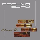 Pseudo Echo - A Beat for You