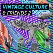Céu Azul (feat. Charlie Brown Jr. & Santti) [Vintage Culture & Santti Remix]