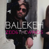 Zeid and the Wings - C Est Un Probleme artwork