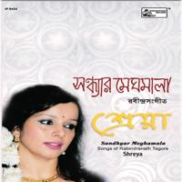 Shreya Guhathakurata - Sandhyar Meghamala artwork