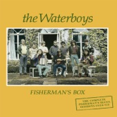 The Waterboys - Sgt. Pepper's Lonely Hearts Club Band