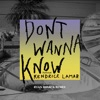 Don't Wanna Know (feat. Kendrick Lamar) [Ryan Riback Remix] - Single ジャケット写真