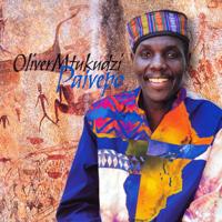 """Oliver """"Tuku"""" Mtukudzi - Paivepo artwork"""